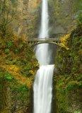 Multinomah fall