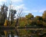 В осенний берег без умолку бьется река