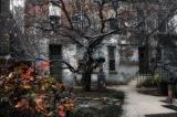 Осенний дворик.