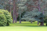 The Mucross House Park