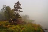 Остров. Туман...