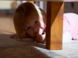 Кто там , под столом?