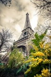 Paris. Décembre
