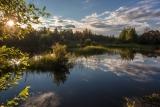 В тишине у озера
