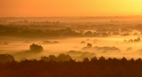 Утро цвета осени