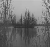 туманный Пруд