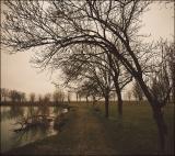 Сонный пейзаж