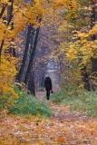 Уходит осень