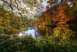 Осень начинается
