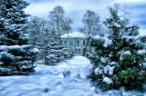 Голубые снега