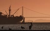 Закат с пеликаном и кораблем