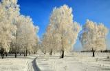 Январский солнечный день