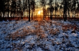 Октябрьский восход со снежком