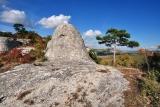 Звероподобные скалы Крыма (Осьминог)