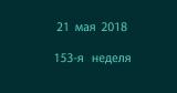 Метка 21 мая 2018