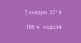 Метка 7 января 2019