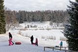Зимний день в Павловске