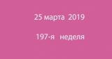 Метка 25 марта 2019