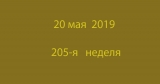 Метка 20 мая 2019