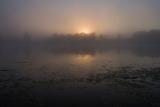 Ранним утром на реке Дубне.
