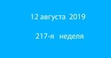 Метка 12 августа 2019