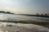 Борисовский пруд