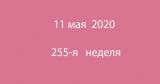 Метка 11 мая 2020