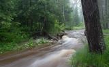 Свежие струи реки