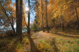 Осеняя тропа
