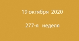 Метка 19 октября 2020