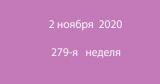 Метка 02 ноября 2020