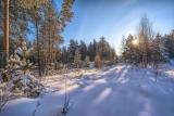 Зимний полдень