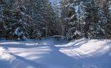 Зимы погода